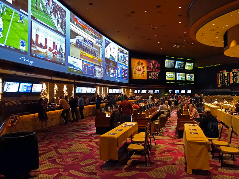 Image result for sportsbook casino