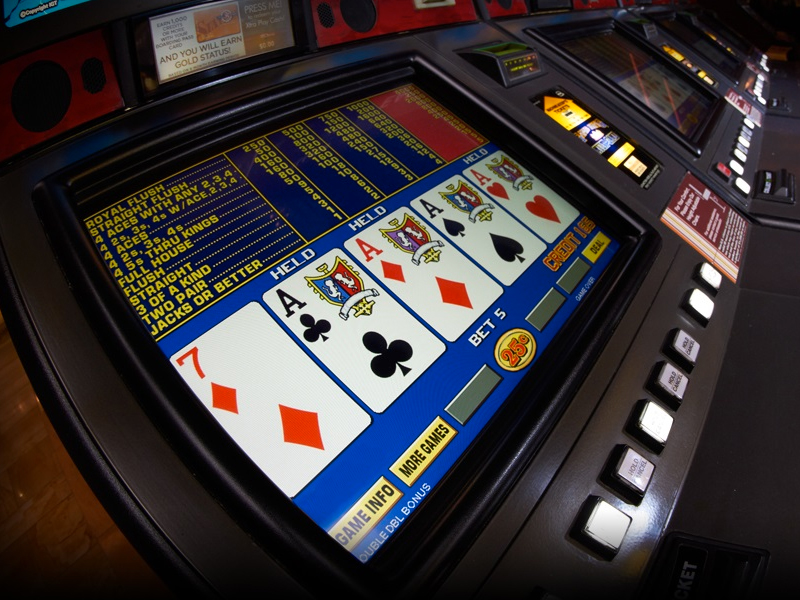 Qld casino employee licence application