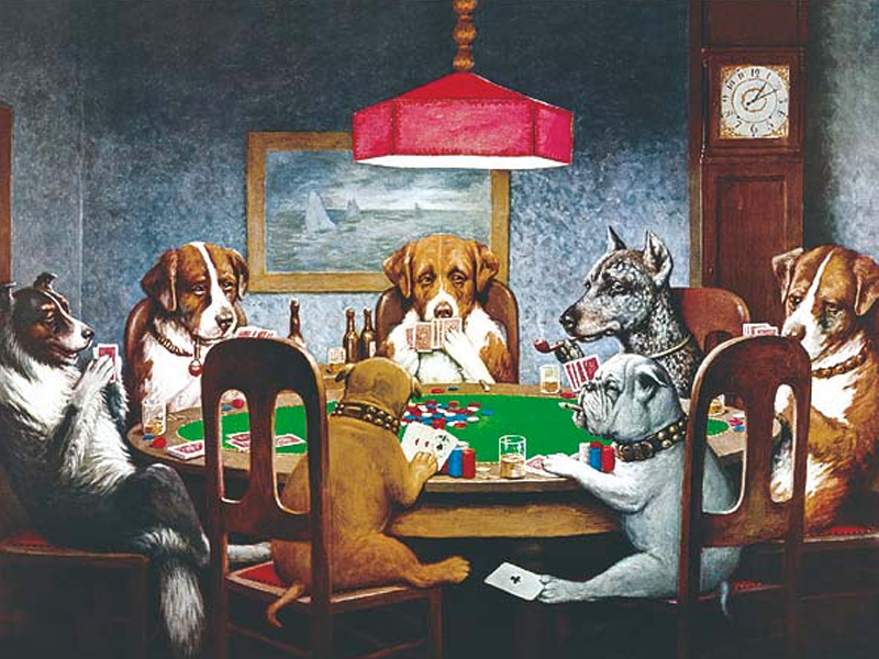 15 things you should know about dogs playing poker gra poker texas